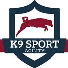 K9 Sport Agility - aqui a G...