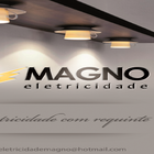 Logo magno 2