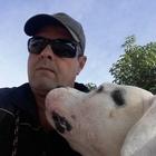 Adestramento de Cães e Vigi...
