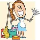 Servicos Domésticos em Geral