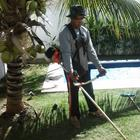 Jardinagem Geral