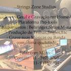 Strings zone 2013 b
