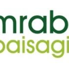 Logo mrabelo