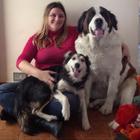 Serviços de Dog Walker (Pas...