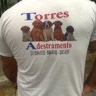 Torres Adestramento de Cães