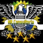 Emblema consultoria