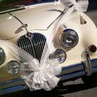 Wedding car love truelove marriage spouses