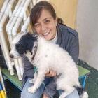 Adestradora Canina
