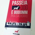 Passeia Dog é Bom Pra Cachorro
