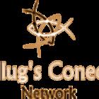 Logo plug33