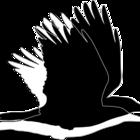 Logo finalpb