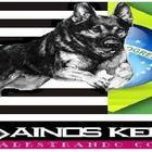 Adestrador de Cães Zona Les...
