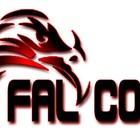 Falcon Informática