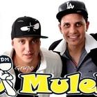 Grupo Di Muleke