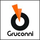 Gruconni - Gesso, Forro, Dr...