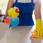 Equipe de Limpeza e Cuidado...