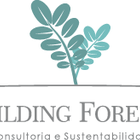 Building Forests - Paisagis...