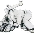 Triangulo sankaku jime judo jiu jitsu