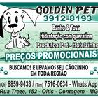 Golden pet anuncio jornal atual