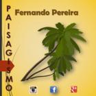 Fernando pereira.pptx 2