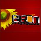 Www.bigonipropaganda.com.br