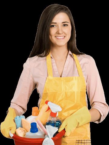 Profissionais em Serviços Domésticos